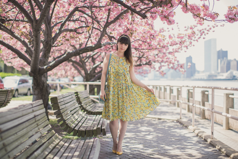 tara jarmon cherry blossom roosevelt island new york - PAULINEFASHIONBLOG.COM_