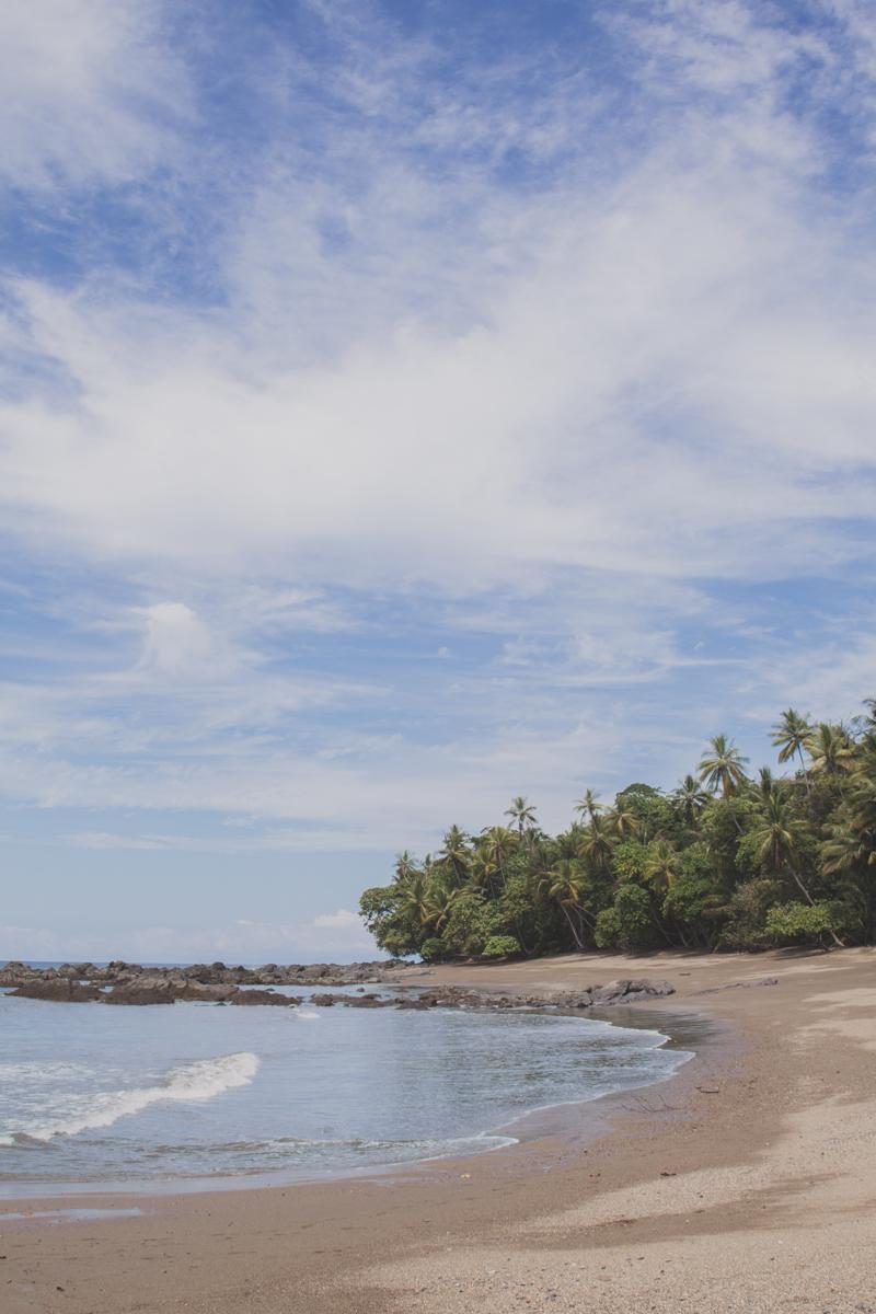 blog travel costa rica corcovado national park copyright paulinefashionblog.com  21 Costa Rica : CORCOVADO