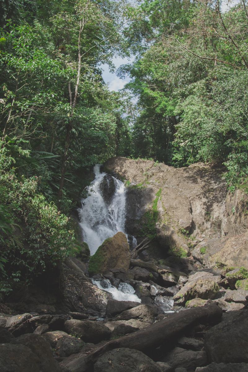 blog travel costa rica corcovado national park copyright paulinefashionblog.com  25 Costa Rica : CORCOVADO