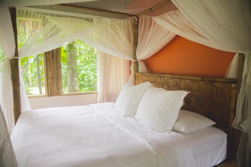 blog travel costa rica pacuare lodge rainforest wildlife - copyright paulinefashionblog.com_-19