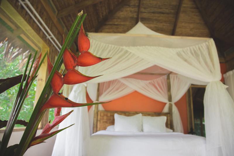 blog travel costa rica pacuare lodge rainforest wildlife - copyright paulinefashionblog.com_-22