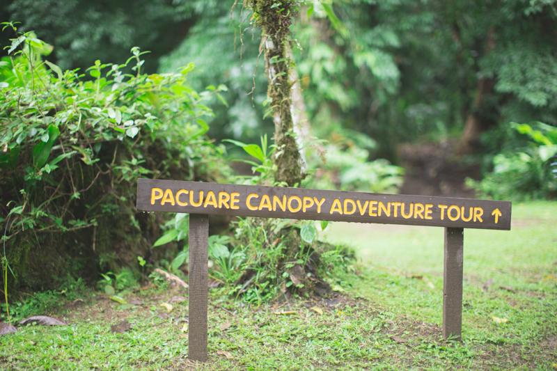 blog travel costa rica pacuare lodge rainforest wildlife - copyright paulinefashionblog.com_-25