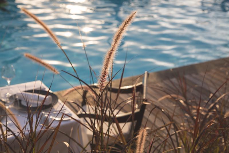 ile de la reunion blog voyage volcan blue margouillat l amberic - copyright paulinefashionblog.com_-2