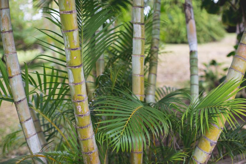 meilleure chambre d'hotes luxe charme ile de la reunion la villa maido - copyright paulinefashionblog.com_-10
