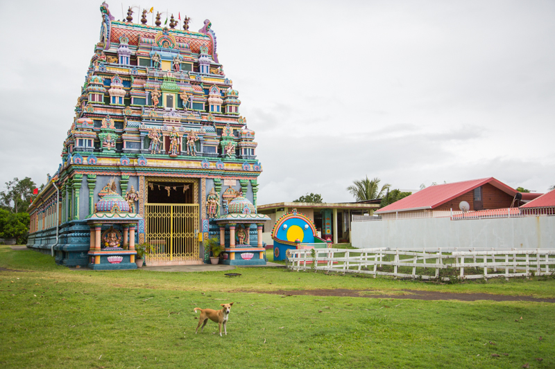 temple tamoul ile de la reunion - copyright paulinefashionblog.com_
