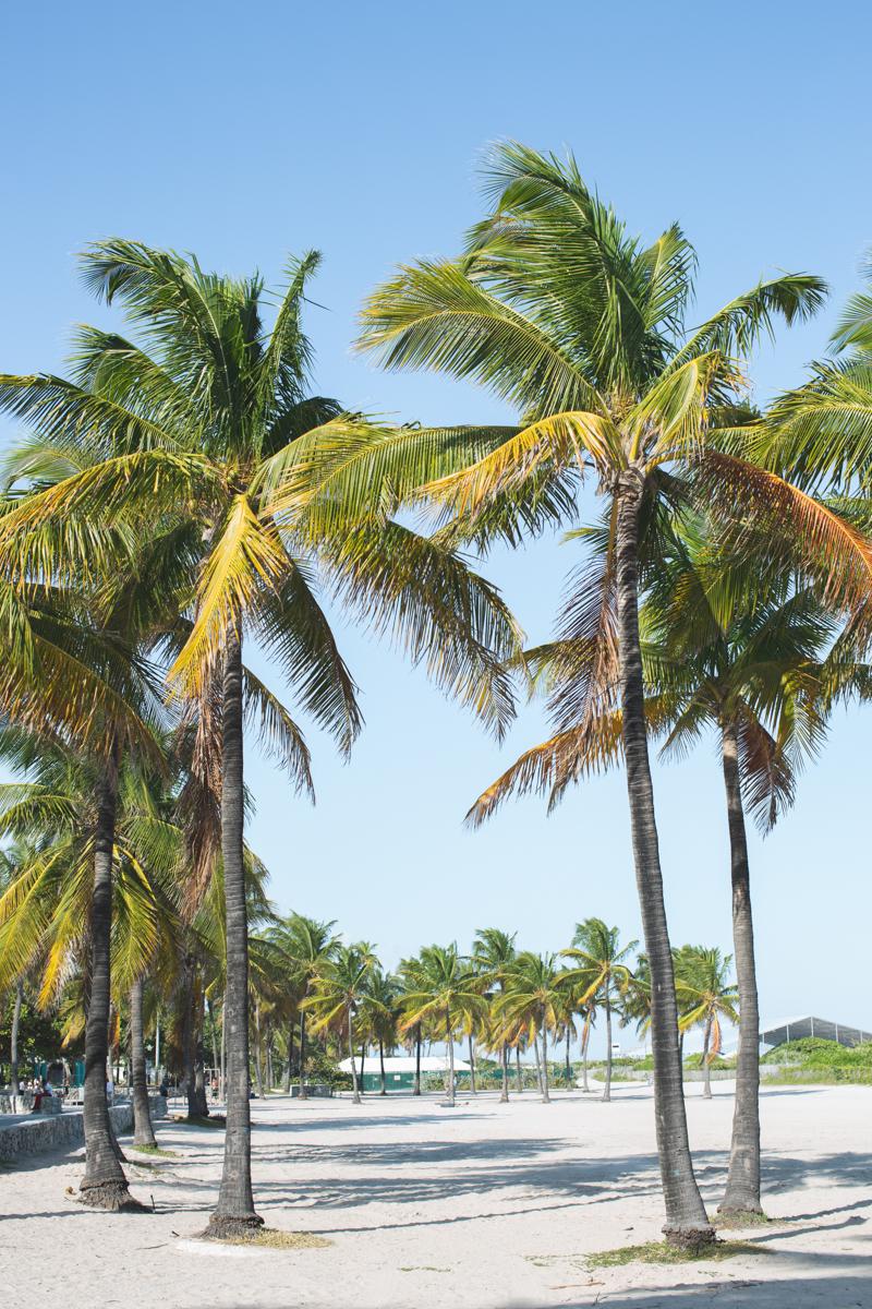 48 hours in miami cityguide south beach wynwood little havana copyright paulinefashionblog.com  70 MIAMI BEACH   cityguide