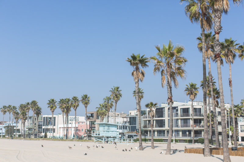 blog cityguide venice beach los angeles voyage travel - copyright paulinefashionblog.com_-47