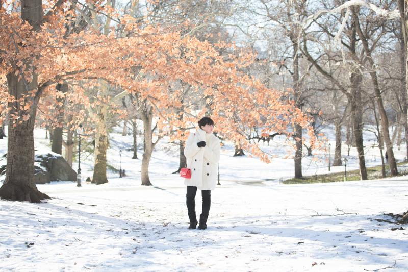 look central park neige doudoune gertrude paulette copyright paulinefashionblog.com  2 Les écureuils de Central Park sont tristes le lundi