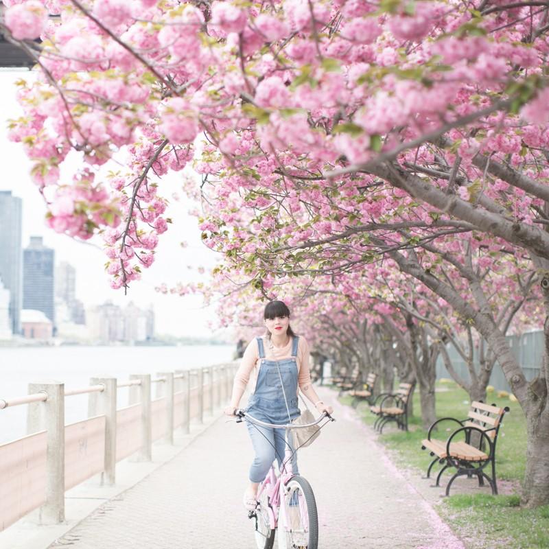tods gommino dotsoflife bleecker blues pink bike cherry blossom copyright paulinefashionblog.com  9 800x800 Dots of Life   La vie en rose