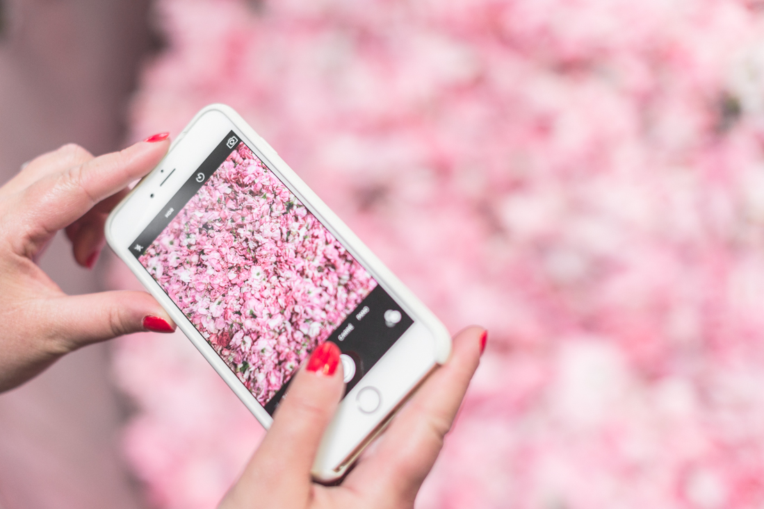 1100 chanel grasse copyright Pauline paulinefashionblog.com 25 La Rose de Mai de CHANEL
