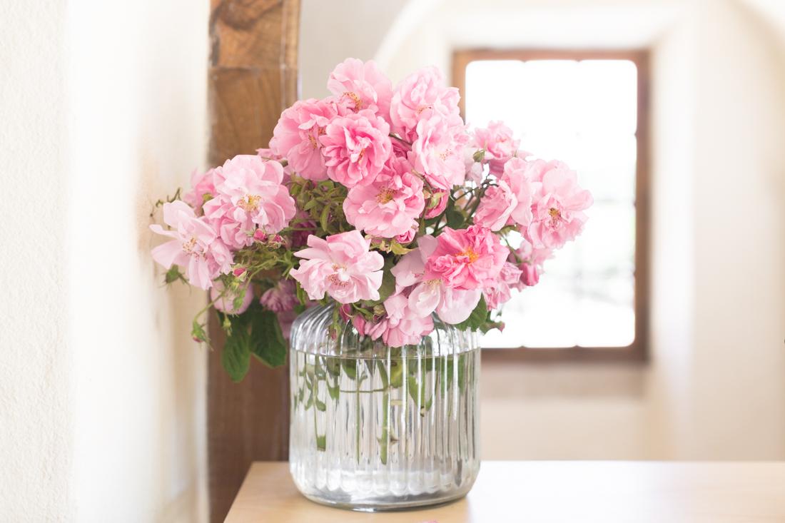 1100 chanel grasse copyright Pauline paulinefashionblog.com 47 La Rose de Mai de CHANEL