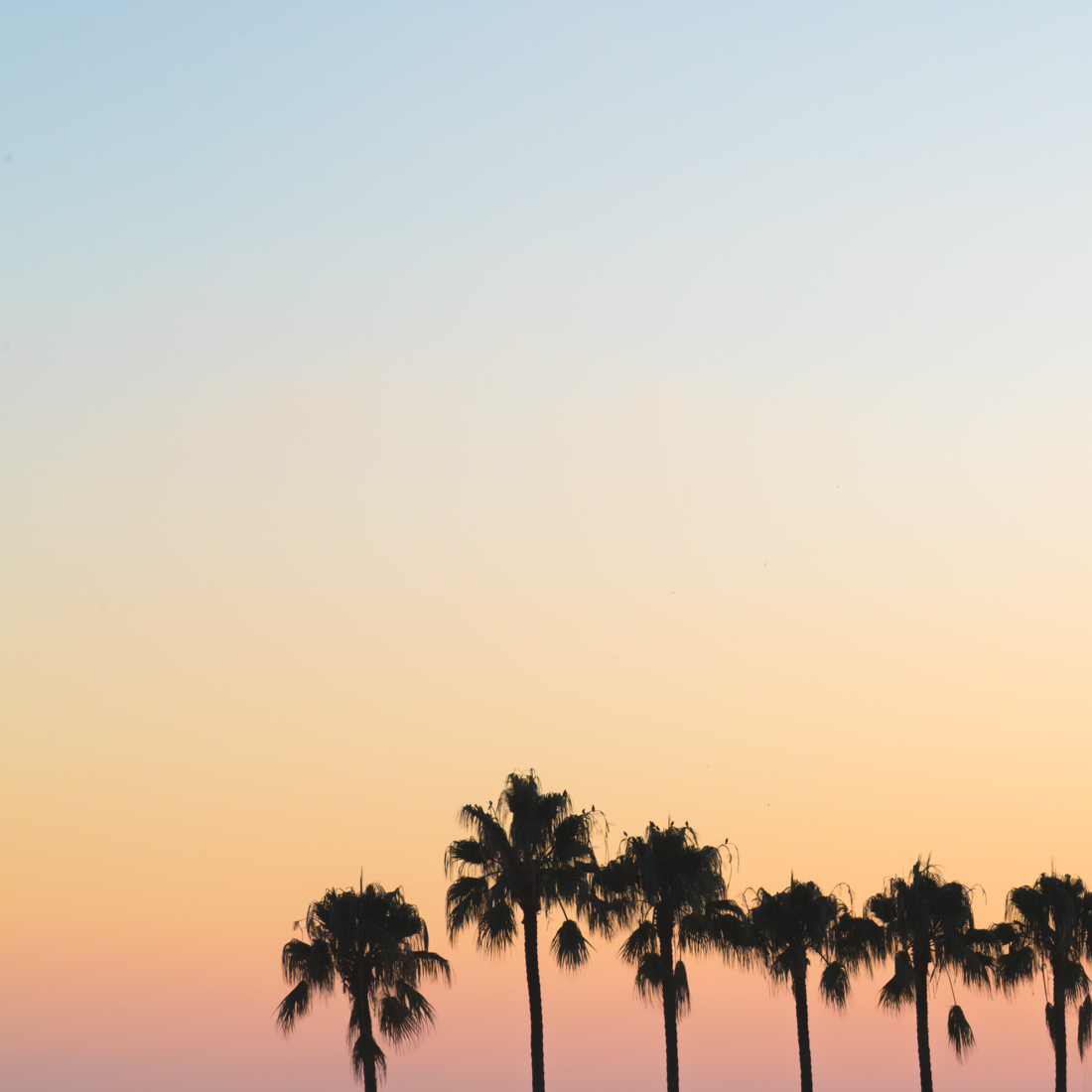 cannes majestic barriere fouquets la plage copyright Pauline paulinefashionblog com 16 Un week end à Cannes