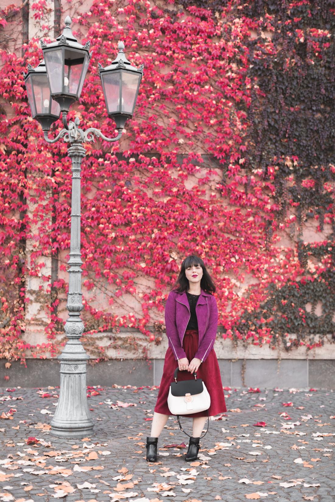 Laisser un commentaire annuler la r ponse - L automne et ses couleurs ...